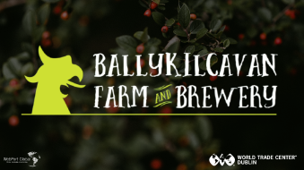 Ballykilcavan Farm and Brewery
