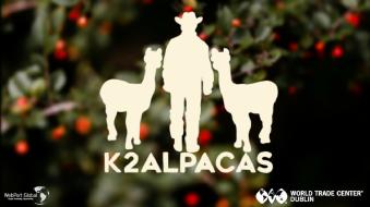 K2 Alpacas
